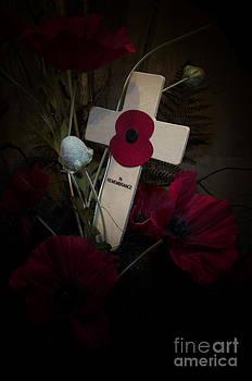 Poppy on the cross by Steev Stamford