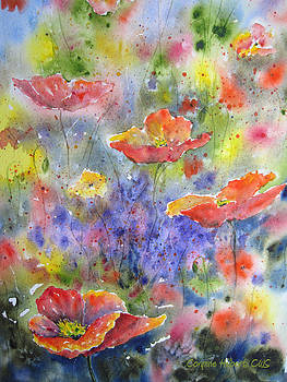 Poppy Passion by Corynne Hilbert