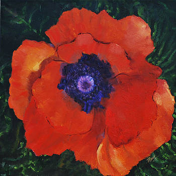 Poppy Potential by Marcy Silverstein