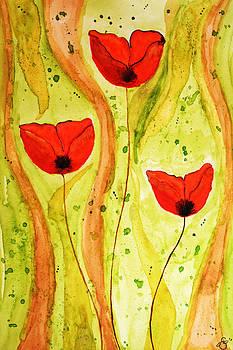 Poppy Splash by Sherry Allen