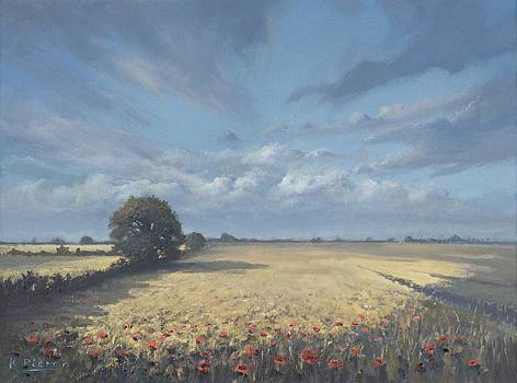 Poppyfield by Richard Picton