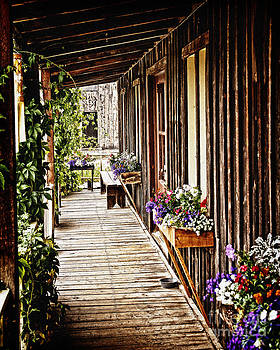 Porch of an Old Country Store by Lincoln Rogers