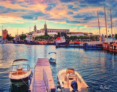 Port of Call Bermuda by Ron Pearl