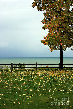 Port Sanilac Lookout, Michigan by Kathy DesJardins