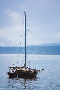 Port Townsend Sailboat by Alicia Lockwood