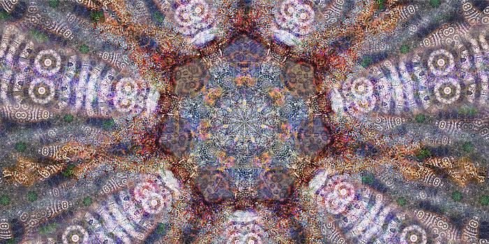 Seven Bee-ings by D Walton