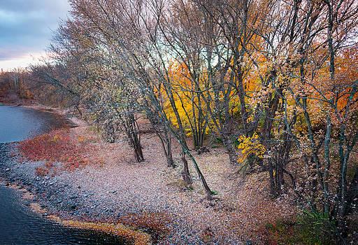 Portland - Fall by Garth Woods