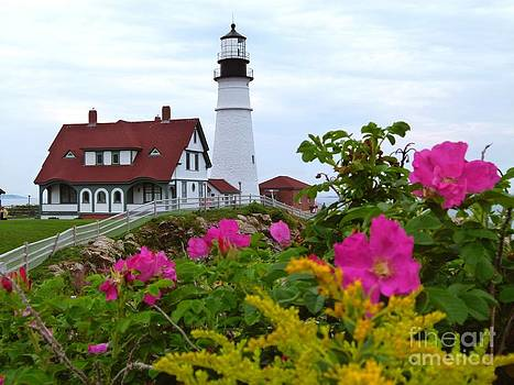 Christine Stack - Portland Headlight with Pink Beach Roses