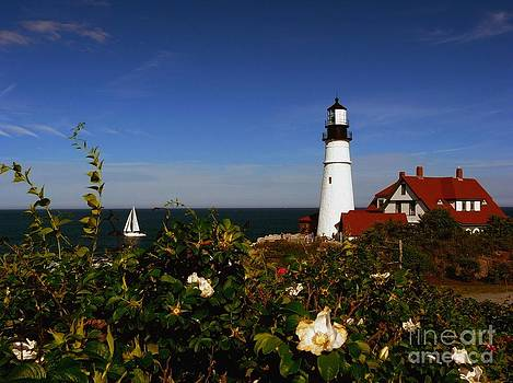 Christine Stack - Portland Headlight with Sailboat
