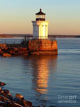 Christine Stack - Portland Ledge Lighthouse Bug Light Sunrise Reflection