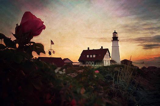Emily Stauring - Portland Rose