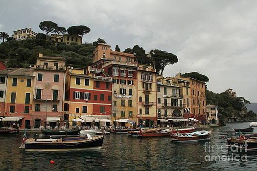 Portofino Italy  by Diane Greco-Lesser