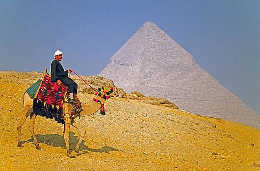 Dennis Cox - Portrait at pyramid