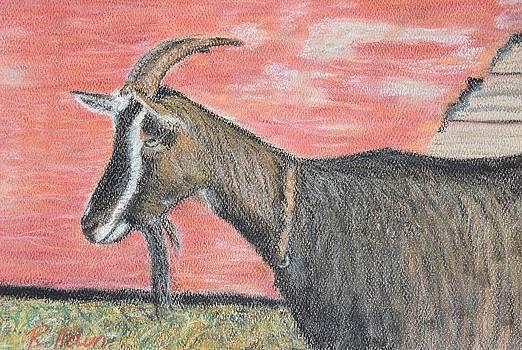 Portrait of a Goat by Renee Helin