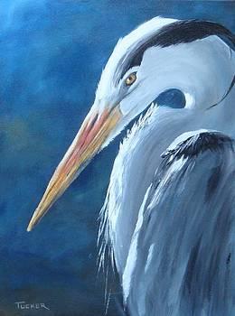Portrait of a Great Blue Heron by Kathleen Tucker