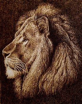 Portrait of a Lion by Cara Jordan