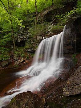 Portrait of B. Reynolds Falls by Tim Devine