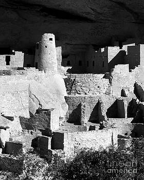 Douglas Taylor - PORTRAIT OF CLIFF PALACE RUIN - SHADES OF GREY