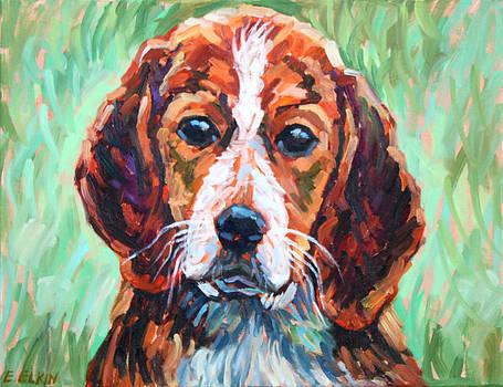 Portrait of Dog by Elizabeth Elkin