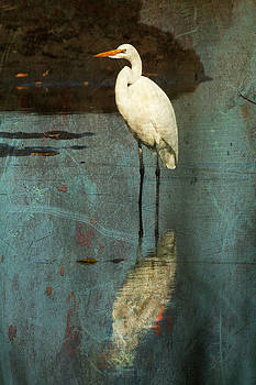 Portrait of Great Egret by Cheryl Ann Quigley