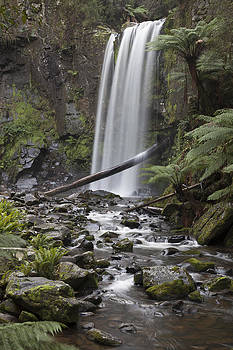 Portrait of Hopetoun Falls by Shari Mattox