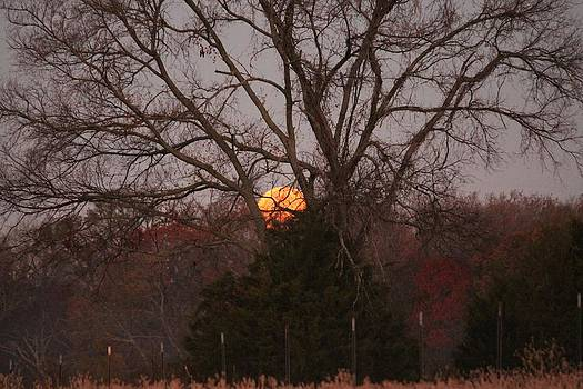 Post Eclipse Moonset by Lorri Crossno
