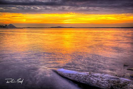William Reek - Post Sunset