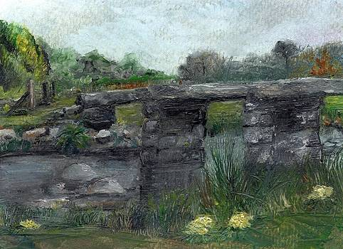 Postbridge Dartmoor by Carol Rowland