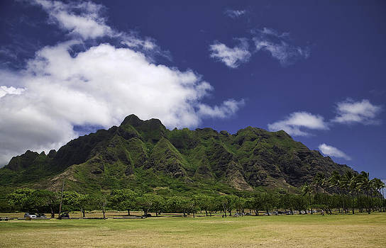 Postcard from Oahu by Joanna Madloch