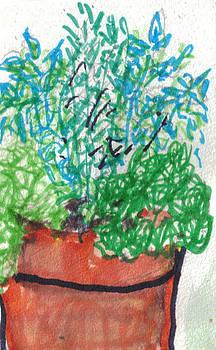 Pot of Herbs by Debbie Wassmann