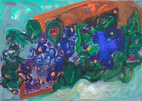 Pot  of Violets by Oana Maria