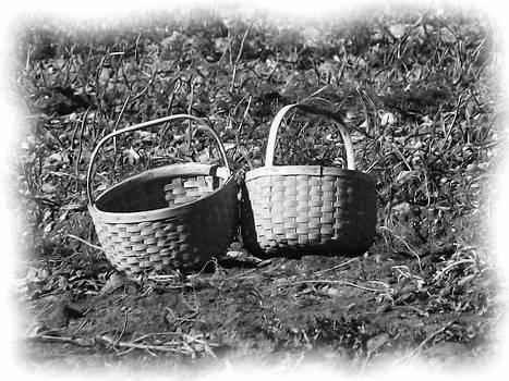 Potato Harvest 10 by Gene Cyr