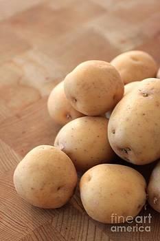 Potatoes by AR Annahita