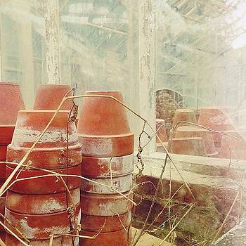 Pots In The Greenhouse 🌱 by Stephanie Tomlinson