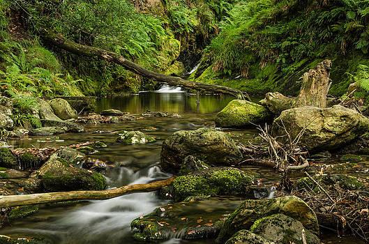 Martina Fagan - Poulanass waterfall