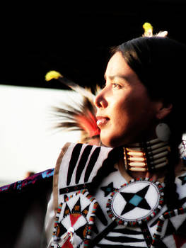 Terry Eve Tanner - Pow Wow Beauty
