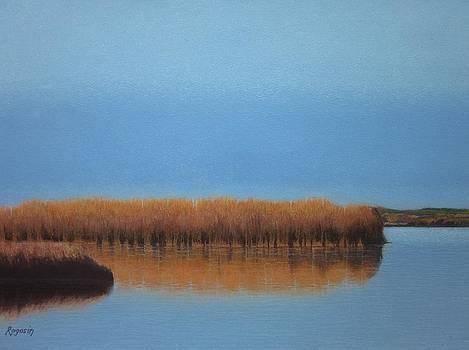 Powder Blue Marsh by Harvey Rogosin