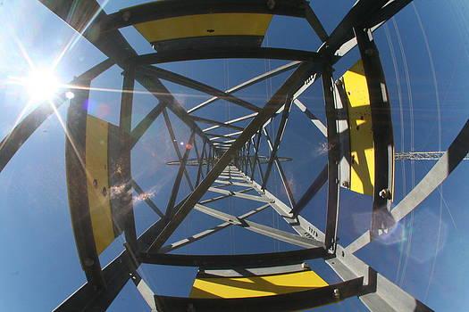 Power Ladder by David S Reynolds