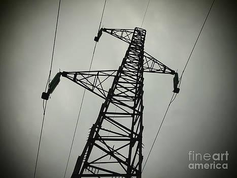 BERNARD JAUBERT - Power pole