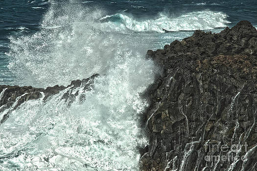 Patricia Hofmeester - Powerful waves
