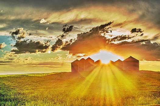Dwayne Schnell - Prairie Sunset