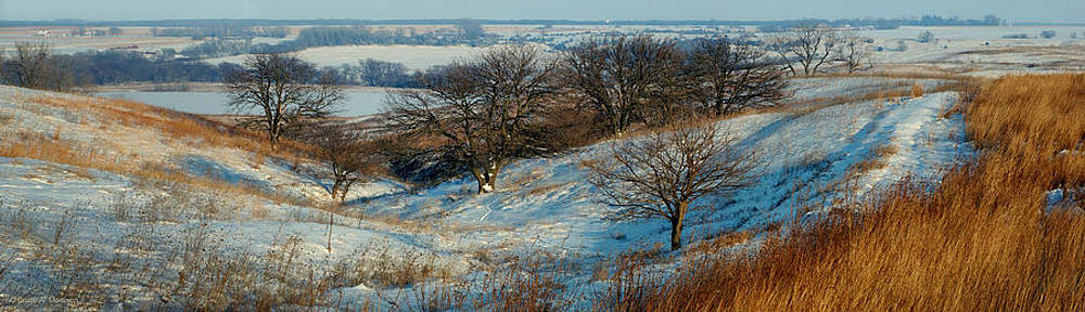 Prairie Winter by Bruce Morrison