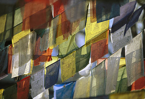 Prayer Flags by Richard Berry