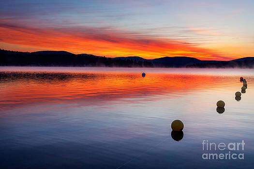 Jo Ann Snover - Pre sunrise colors over misty lake