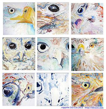 Predatory Birds by Lea Cox