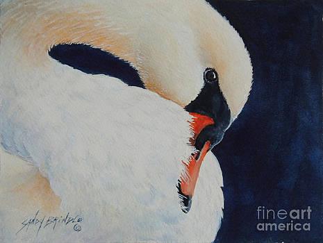 Preening. SOLD  by Sandy Brindle