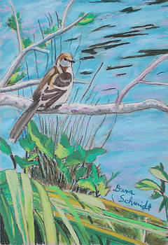 Pregnant Mockingbird by Dana Schmidt