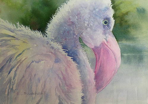 Preparing To Be Pink by Cynthia Roudebush