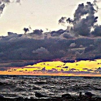 Presque Isle Beach 1 by Ashley Flowers
