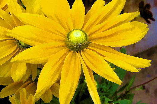Pretty In Yellow by Photographic Art by Russel Ray Photos